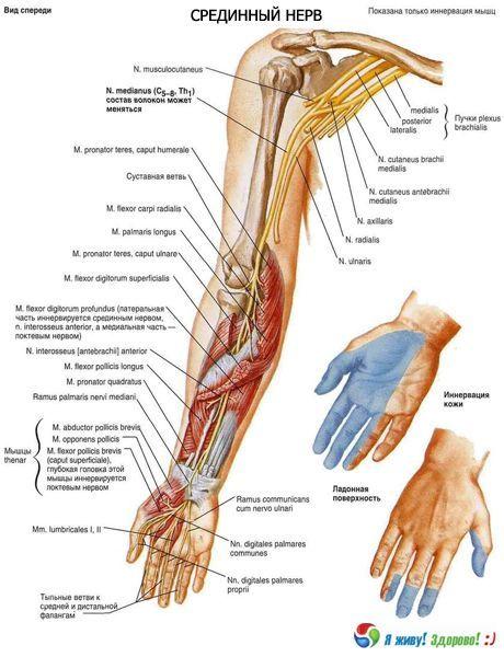 10 icd nas neuropatia mãos